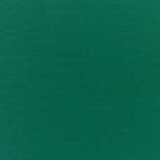 Kanvas Yeşil Kumaş